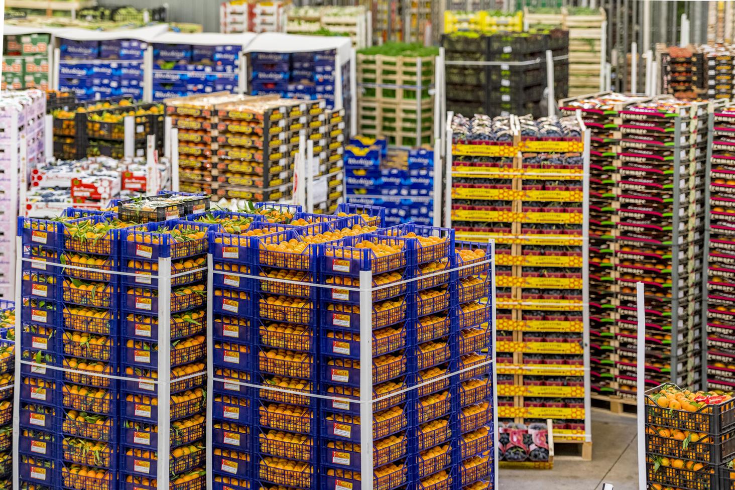 Casse di frutta immagazzinate al il Mercato Agro Alimentare di Padova