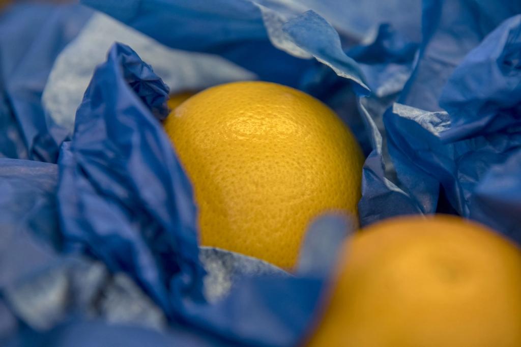 Frutta Dal Bello Sife progetto Plastic Free